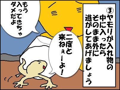 yamori-hokaku3