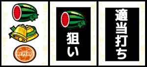 南国物語スペシャル スイカ