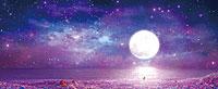 南国物語A 紫夜