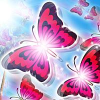 南国育ち~蝶々ver~ スロット